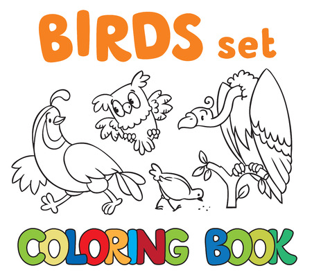 Coloring book or coloring picture with birds, vulrure, owl,quail and pigeon. Ilustração