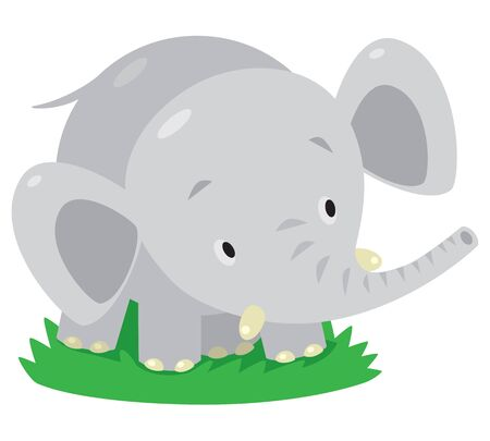 jumbo: Children vector illustration of little funny elephant or jumbo Illustration