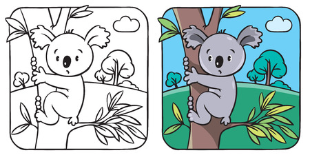 Coloring book or coloring picture with funny koala bear on eucaliptus tree. Vector