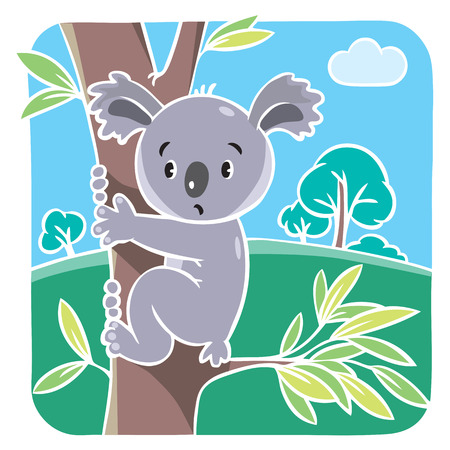 Children vector illustration of funny koala bear on eucaliptus tree. Vector