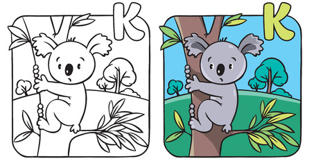 Coloring book or coloring picture with funny koala bear on eucaliptus tree. Alphabet K Vector