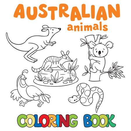 Kleurboek of kleurplaat met wilde dieren, tijger, panda, numbat, leguaan