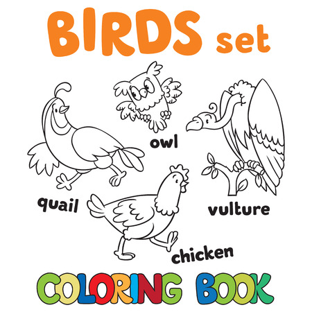 Coloring book or coloring picture with birds, vulrure, owl, quail and chicken. Ilustração
