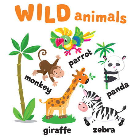Set of funny cute african animals, panda and parrot, zebra, giraffe and monkey