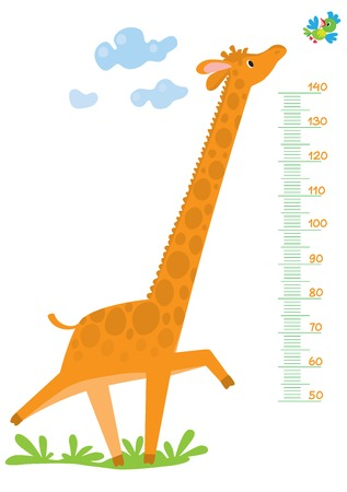 height measure: Funny running giraffe run across the grass behind the bird. Meter wall or height meter from 50 to 140 centimeter Illustration