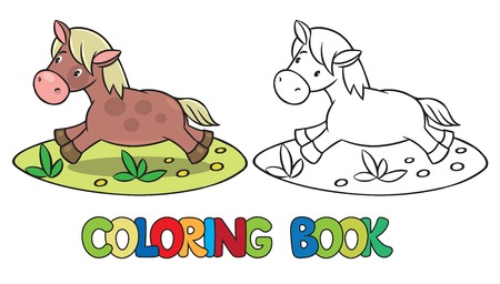 coloration: Coloring book of little funny little horse or pony