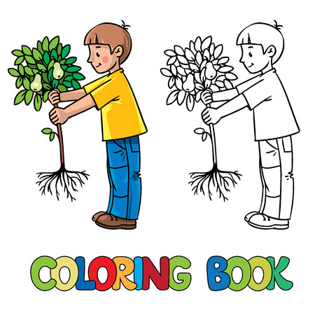 pear tree: Coloring book or coloring picture of boy the gardener with a small pear tree. Illustration