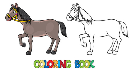 brown horse: Coloring book or coloring picture of  funny brown horse