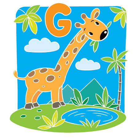 g giraffe: Children vector illustration of funny giraffe eating green leafs. Alphabet G