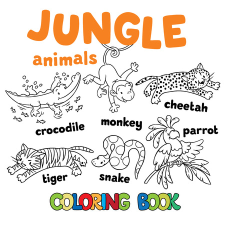 gepard: Set of funny crocodile, tiger, snake, cheetah, parron and monkey. Coloring book or coloring pictures of jungle animals