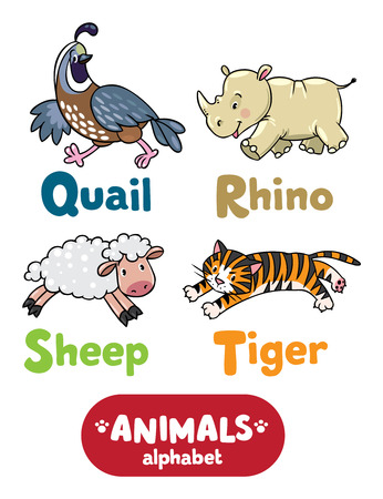 Children vector illustration of funny quail, rhino, sheep and tiger.  Animals zoo alphabet or ABC.