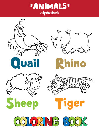 tigre bebe: Coloring book or coloring picture of funny quail, rhino, sheep and tiger.  Animals zoo alphabet or ABC. Vectores