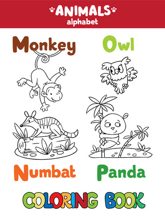 picture: Coloring book or coloring picture of funny monkey, numbat, owl and panda.  Animals zoo alphabet or ABC.