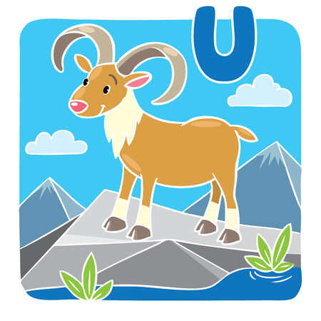 bighorn: Children illustration of funny urinal on rock. Alphabet U