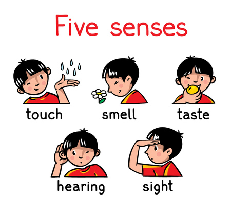 five: Icons of five senses - touch, taste, hearing, sight, smell. Children vector illustration of boy in red t-shirt