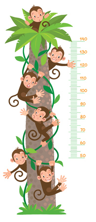 height measure: Meter wall or kids height chart with big high bamboo tree, six funny monkeys on lians. Children vector illustration. With scale to measure from 50 to 140 centimeters