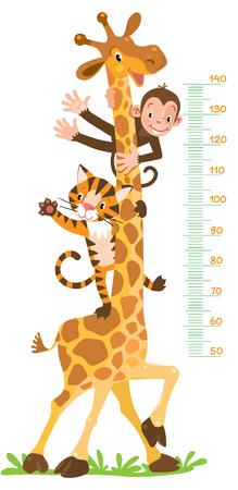 Giraffe, monkey, tiger. Meter wall or height chart  イラスト・ベクター素材