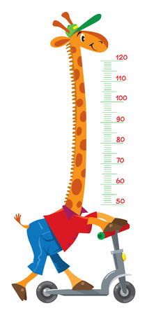 Giraffe on scooter. Meter wall or height chart