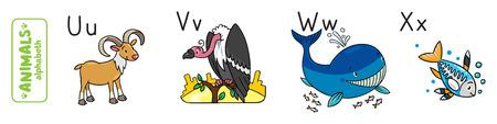 Animals alphabet vector