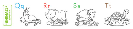 Coloring book or coloring picture of funny quail, rhino, sheep and tiger. Animals zoo alphabet or ABC.