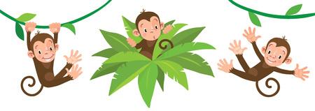 Pequeños monos graciosos en lians. Conjunto de ilustraciones Ilustración de vector