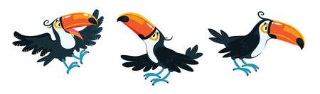 Toucans. Children vector illustration set of funny toucan birds with a big orange beak and black plumage Illustration