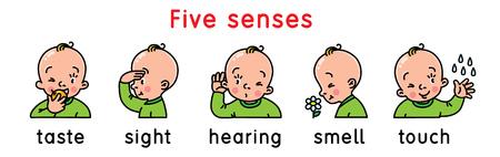 Conjunto de iconos de cinco sentidos.