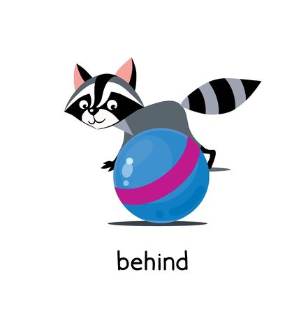 Funny raccoon behind the ball. Preposition of place for learning english. Children vector cartoon with description of funny animal around the ball. Isolated illustration on white background for kids