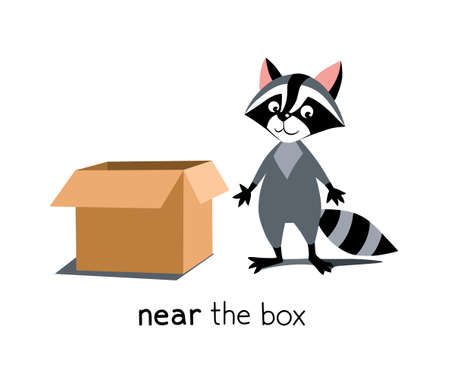 Preposition of place. Raccoon near the box