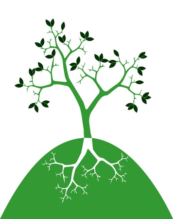 symbol of tree with roots on white background Vector
