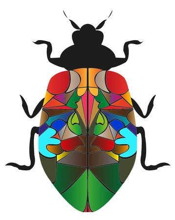 bionomics: Type insect cockroach on white background