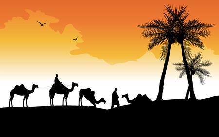 camel desert: camel caravan in the desert