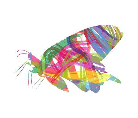 abstrakte Silhouette der Schmetterling