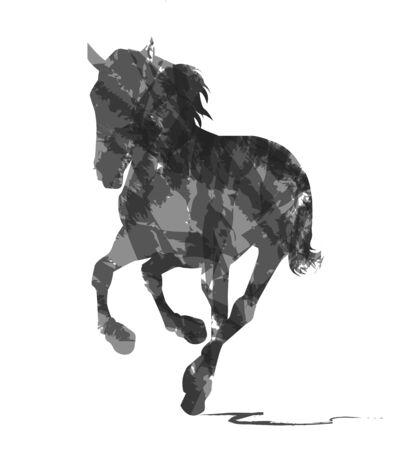 caballo abstracto