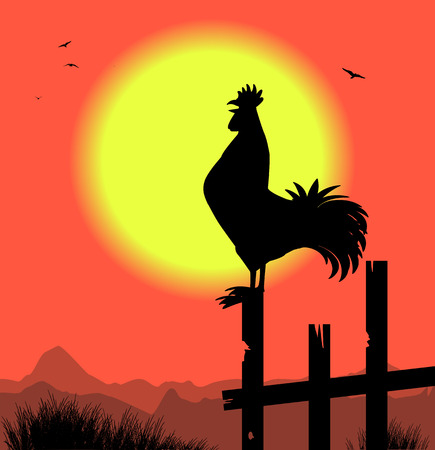 silhouette of rooster