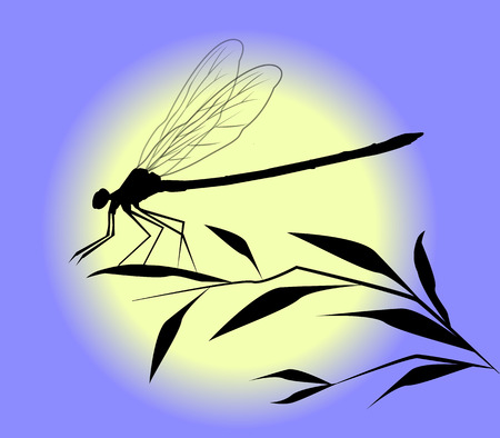 secluded: dragonfly silhouette Illustration