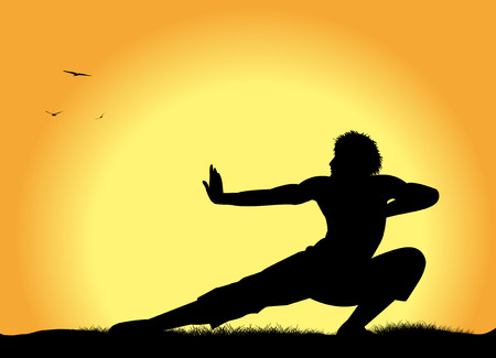 arte marcial: silueta del hombre que practica artes marciales Vectores