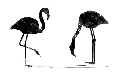 flamingos: abstract flamingos