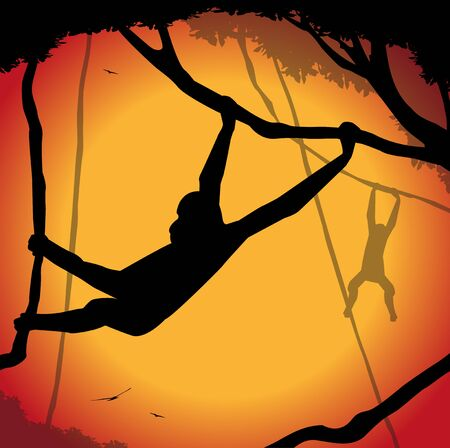 beastly: monkeys silhouette hanging from the trees