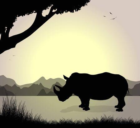 herbivorous animals: silhouette of rhinoceros