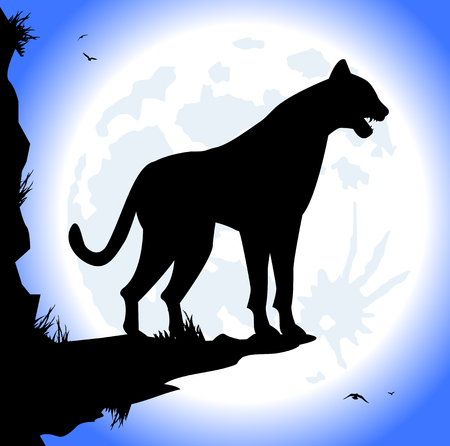 tusks: silhouette of panther at night with the full moon