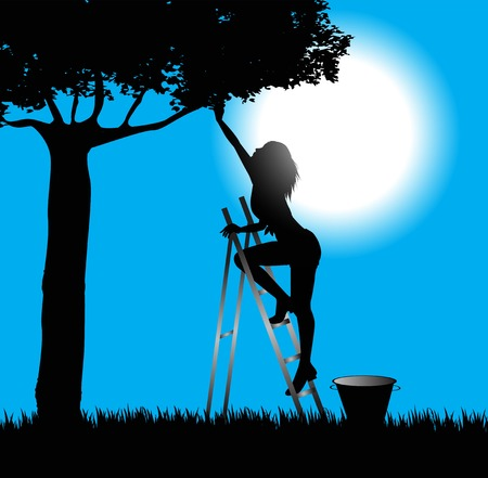cultivator: silhouette of girl on the scale that collects fruit from the tree