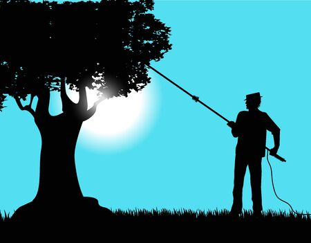 silhouette of farmers during the olive harvest Ilustrace