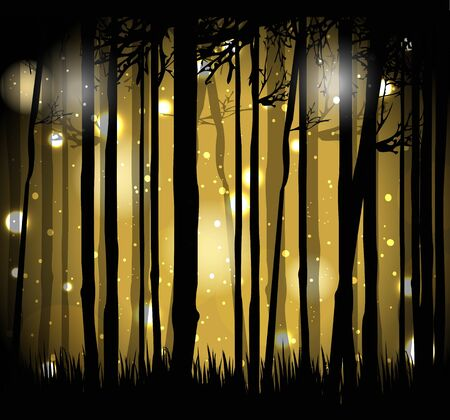 mysterious: illustration of magical forest