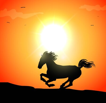 Vector illustration of galloping horse