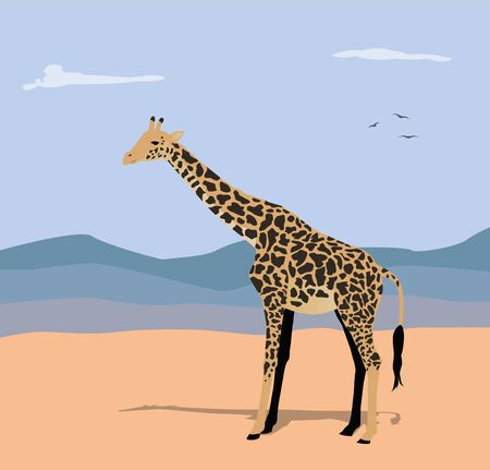 vector illustration of giraffe and hills in the background Illustration