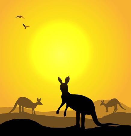 Vector illustration of kangaroo at sunset.