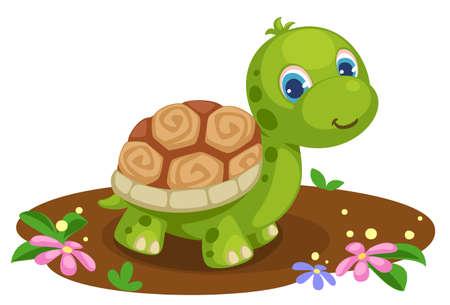 cute baby tortoise cartoon vector illustration Vecteurs