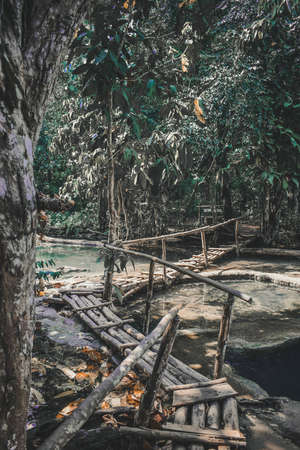 Pathway in a Jungle Nearby the Kuang Si Waterfalls in Laos