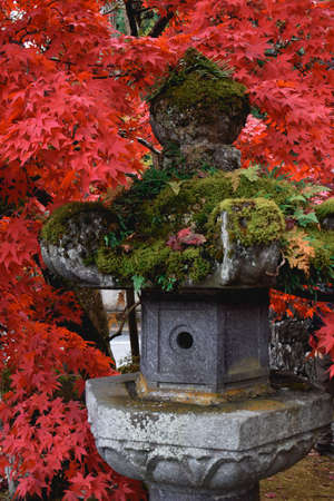 Japanese traditional stone lantern covered with green moss surrounded by red leaves in autumn Nikko Japan Stock fotó
